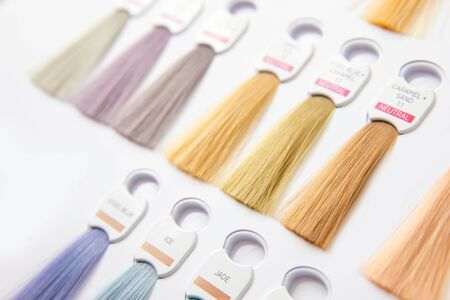Hair palette dyed different colors. Hairstyle wig tints set for beauty industry. 스톡 콘텐츠