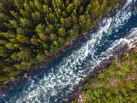 Mountain river with rapids and waterfalls coniferous forest in summer. Aerial top view Banco de Imagens