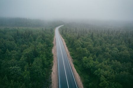 Forest fog road, dramatic mood. Aerial view