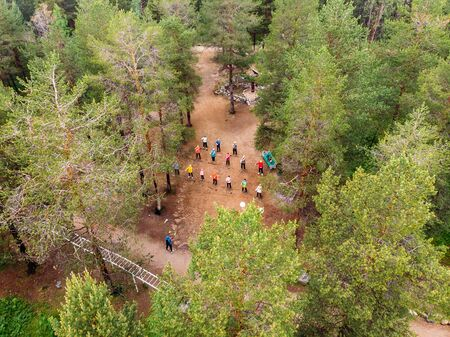 Nordic walking, senior active elderly people involved in sports go outdoor park. Aerial top view. Stock Photo