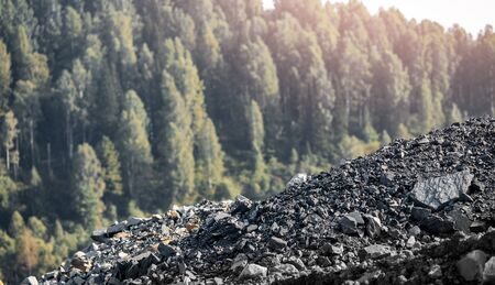 Black hard coal, in background forest and nature. Concept environmental pollution, destruction of flora and fauna industry 版權商用圖片