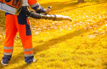 Leaf blower Male worker removes leaves lawn of garden autumn.