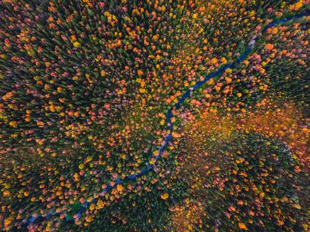 Autumn forest with yellow and red trees and blue river aerial view