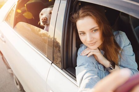 Concept lifestyle travel. Selfie photo of beautiful girl driving car with dog lablador retriever.