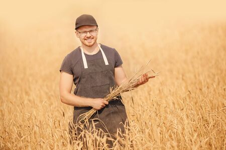 Young farmer standing in wheat field holding crop in hands. Agriculture industry concept Stok Fotoğraf
