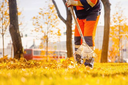 Leaf blower Male worker removes leaves lawn of garden autumn