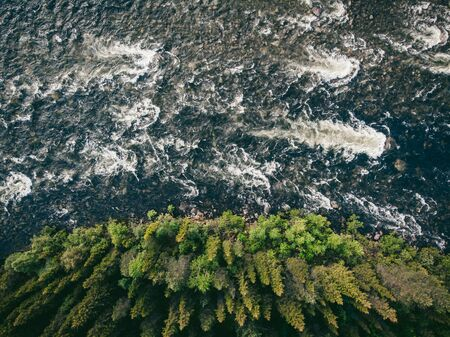 Mountain river with rapids and waterfalls coniferous forest in summer. Aerial top view
