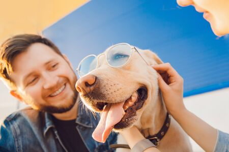 Male owner takes selfie photo with dog labrador in sunglasses. Concept fun and joy with pet for walk Stock fotó