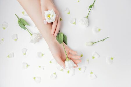 Close-up beautiful sophisticated female hands with flowers on white background. Concept care, anti-wrinkles, anti-aging cream, spa.