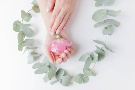 Close-up beautiful sophisticated female hands with pink flowers on white background. Concept care, anti-wrinkles, anti-aging cream, spa.