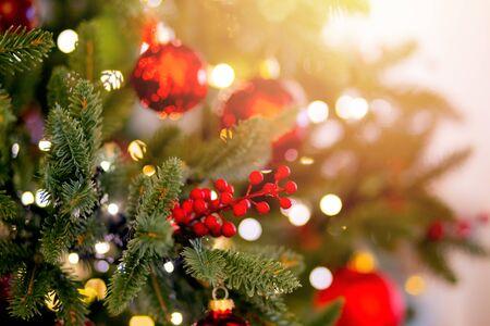 Christmas red pine tree with background bokeh light, sun light Stockfoto
