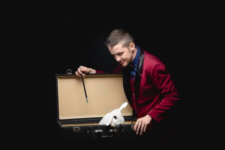 Magician shows trick with disappearance white rabbit in suitcase magic wand, black background Banco de Imagens