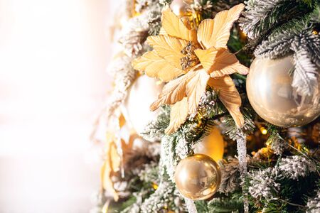 Christmas background golden flowers cones tree with branches of spruce, covered with white artificial snow and balls felt.