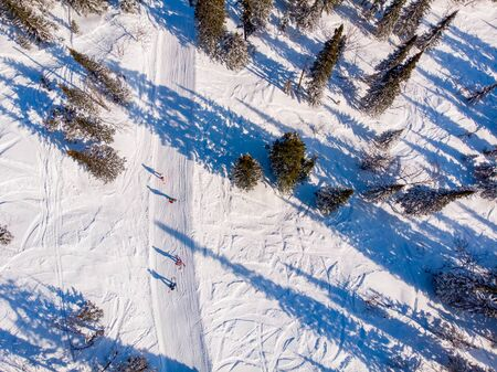 Team friends snowboarders and skiers rides along track through forest, aerial top view