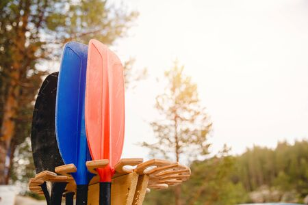 Colored paddles for kayak rafting on tropical mountain river.