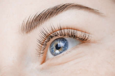 Macro photo woman with long lashes in beauty salon. Eyelash extension procedure