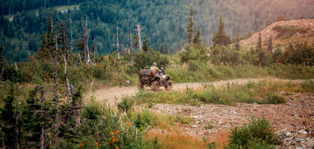 ATV bike rides through forest off-road in trip summer Stock Photo