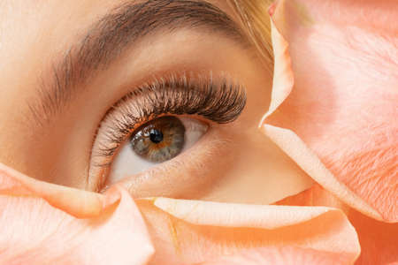 Close up of woman green eye eyelashes extension in flower petals. Tenderness beauty procedure fashion