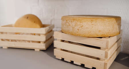 Biological natural round milk cheese in wooden box