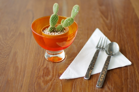 Small Cactus with Fork on Wood Table