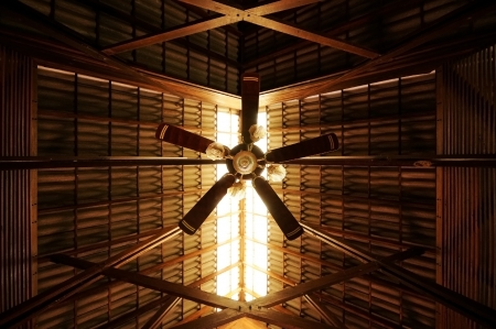 Ceiling Fan with Sunlight photo
