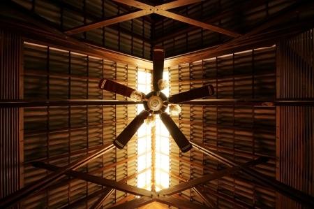 Ceiling Fan with Sunlight Standard-Bild