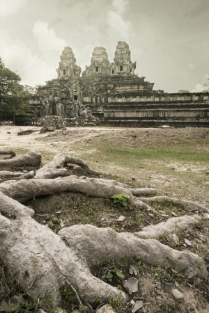 angor: Root of Big Tree in front of Ta-Keaw Castle, Angor Cambodia Stock Photo