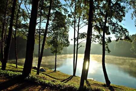midst: Early morning midst of the lake in Mae Hong Son