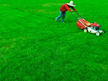 lawn area: a man cutting grass in football yard by mower Stock Photo