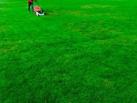 a man cutting grass at football yard photo