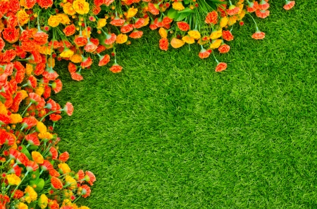 Artificial Grass Field and Flowers ,Top View Texture photo