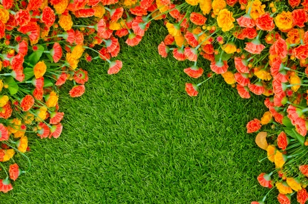 Artificial Grass Field and Flowers photo