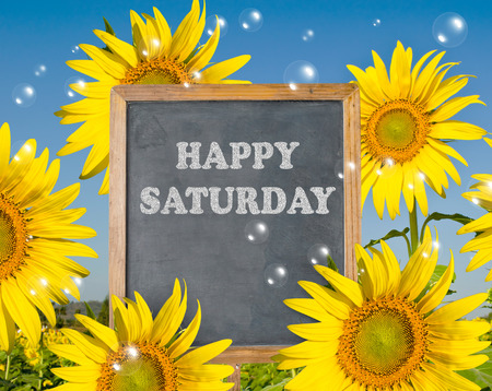 saturday: Happy Saturday with blooming sunflower on background