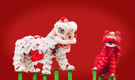 new year dance: Chinese lion costume dance during Chinese New Year celebration