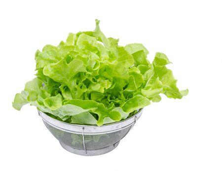 green vegetable: Fresh green vegetable over white