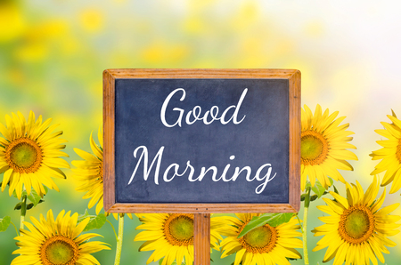 good work: Good morning on blackboard with sunflower background Stock Photo