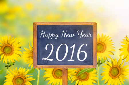 Happy new year 2016 on blackboard with sunflower background