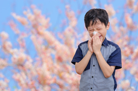 Little Asian boy has allergies from flower pollen Stock Photo - 50494094