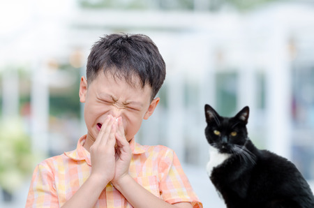 Little Asian boy has allergies with fur particles allergy fever