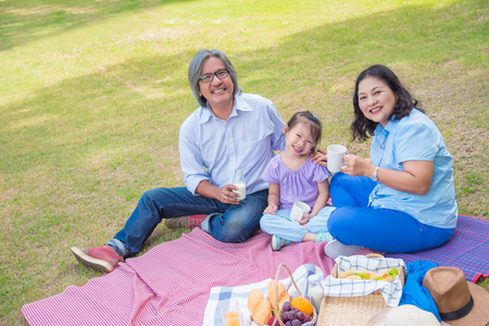 Asian Grandparents spend time in holiday with granddaughter by picnic at park. Stock Photo