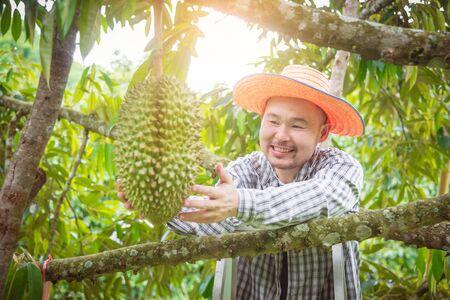 Aziatische mannelijke boer kijkt naar Durian in zijn tuin en glimlacht gelukkig. Durian is een koning van fruit in Thailand. Stockfoto