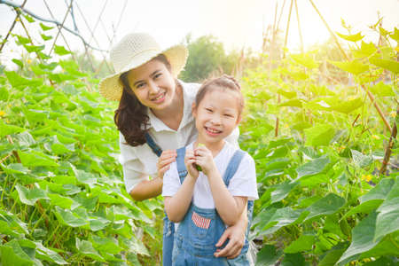 Little asian girl eating fresh cucumber from her garden and smiles with her mother.