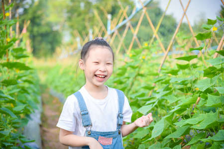 Little asian girl smiling in cucumber garden.