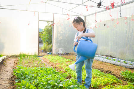 Little asian girl watering vegetables at greenhouse .