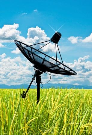 antenas de plato de satélite en campo bajo el cielo Foto de archivo