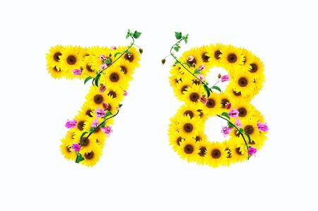 sunflower numbers 7 8 isolated on white background  photo