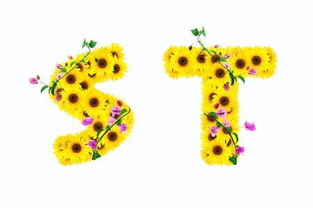 alphabet s: alfabeto girasol S T aislados en fondo blanco