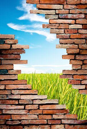 muro rotto: muro poroso per vedere il campo di riso e il cielo blu Archivio Fotografico