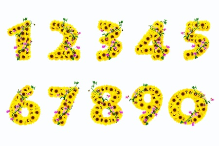 0 9: sunflower numbers 0 - 9 isolated on white background  Stock Photo
