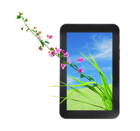 pink flower and fresh grass on tablet PC isolated on white background photo